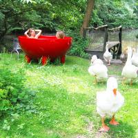Pool garten hier finden sie passenden produkte for Garten pool wasserpflege